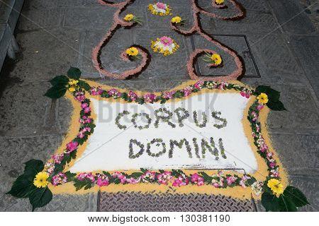 Petal And Flower Carpet For Corpus Domini Christi Celebration