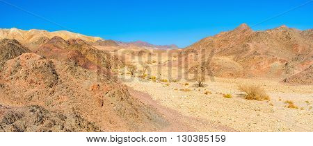 The dry river valley in desert Eilat mountains serves as the tourist footpath with poor vegetation Israel.