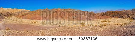 The dry yellow riverbed surrounded by red slopes in Eilat mountains Israel.