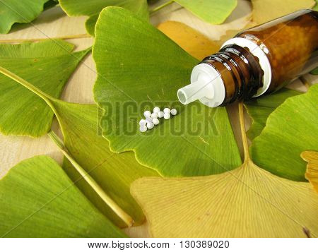 Ginkgo leaves and homeopathic pills in bottle
