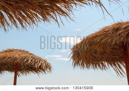 Roofs of palm leaves with blue sky in background