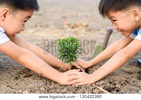 Boy Planting On Crack Soil