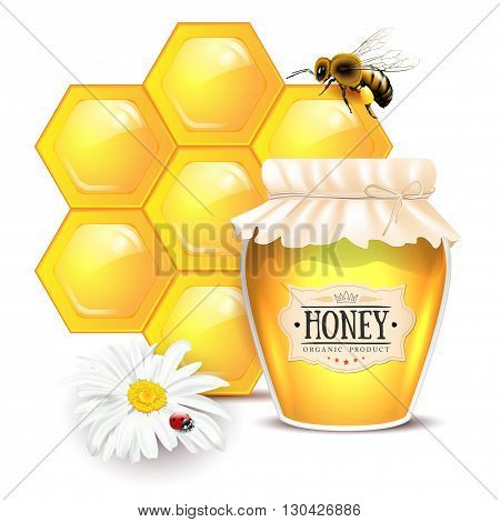 Still life with honey concept. Bee honeycomb glass of honey with label daisy flower with ladybug - isolated on white background. Vector illustration.