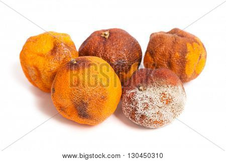 Group of rotten oranges isolated on white background