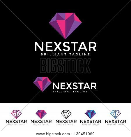 Nex Star Logotype and Tagline. Vector template.