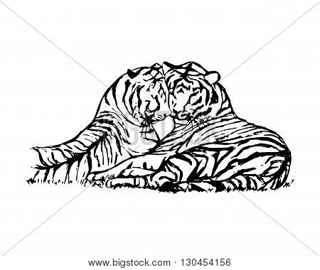 Graphic picture of wild cats. Two tigers lie next to. Abstract tigers pattern on white background vector