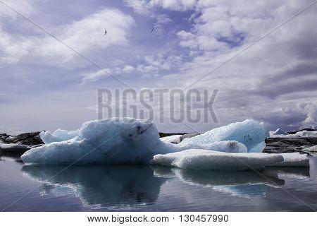Iceland, water, ice, floe, eternity, melting, freedom, gull, blue, reflection, icy, lagoon