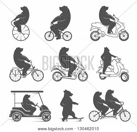 Vintage Illustration bear on a bike with Grunge effect. Funny bear ride a bicycle on a white background for posters and T-shirts