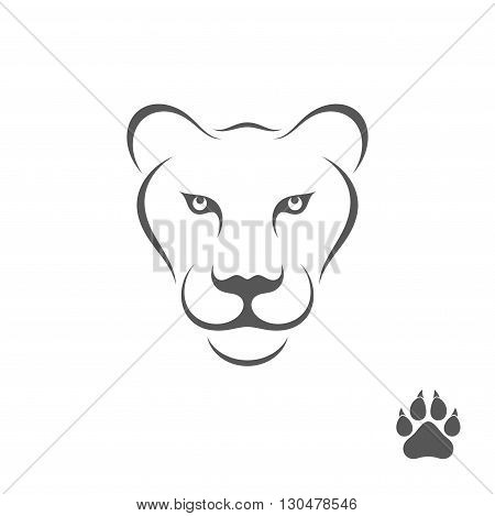 Lioness with paw print. Abstract animal on white background