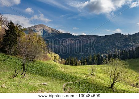 Amazing Spring Mountain Landscape With Blue Sky
