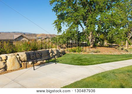 Bench And Manicured Lawn