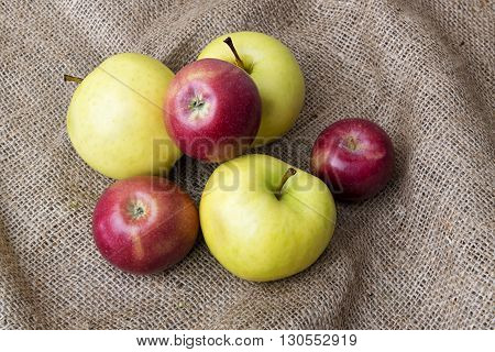 Ripe delicious red and green apples on sackcloth