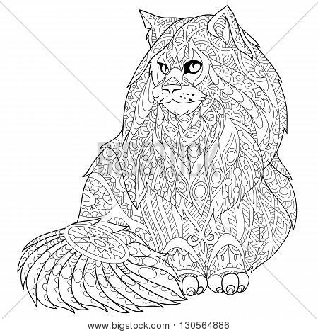 Zentangle stylized cartoon maine coon (american longhair) cat. Hand drawn sketch for adult antistress coloring page T-shirt emblem logo or tattoo with doodle zentangle floral design elements.