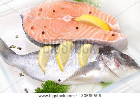 big salmon fish defrosting before cooking  over white