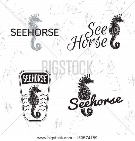 Vector black and white logo set with sea Horse. The sea Horse as main element of logotypes on white background