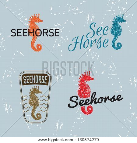 Vector colourful logo set with sea Horse. The sea Horse as main element of logotypes on grey background