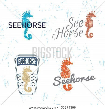 Vector colourful logo set with sea Horse. The sea Horse as main element of logotypes on white background