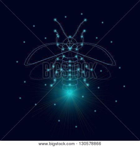 Firefly bug logo design template. Luminous firefly. Firefly with luminous nodes at the intersections of the ribs. Flying bug glowworm. Lightning bug with its wings open. Isolated vector illustration.