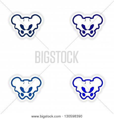 Set paper stickers on white background pelvic bones