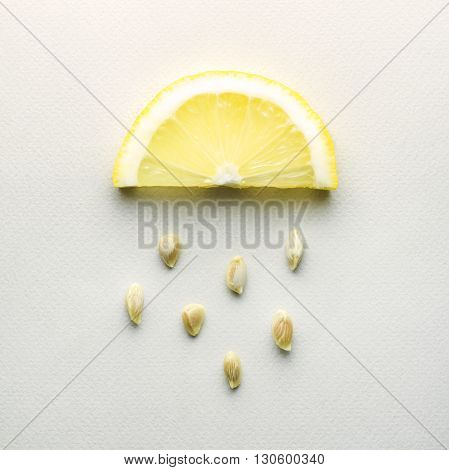 Creative concept photo of a lemon slice with seeds falling down on grey background.