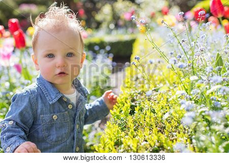 beautiful toddler boy with blue eyes looking straight enjoying springtime at the park