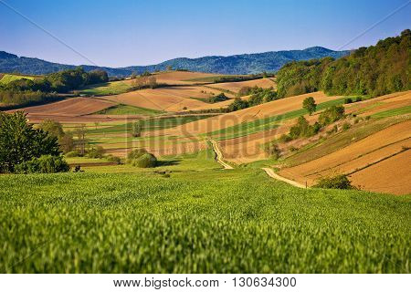 Idyllic springtime landscape view of fields and meadows in Prigorje region of Croatia