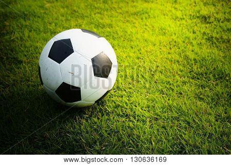 A football (soccer) on green grass field background