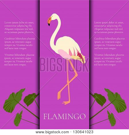 Vector white flamingo design template with place for text. Flamingo poster. Exotic bird made in flat style. Flat flamingo bird symbol. Flamingo icon. Flamingo silhouette isolated on purple background.