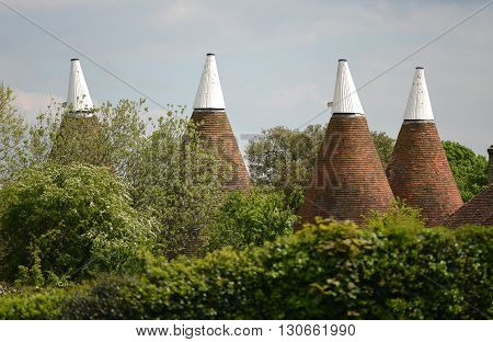 Kentish oast house roofs with white tops