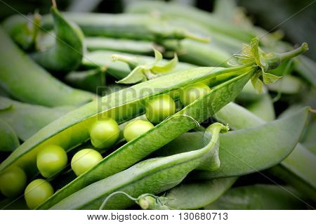 fresh sweet pod green peas on closeup