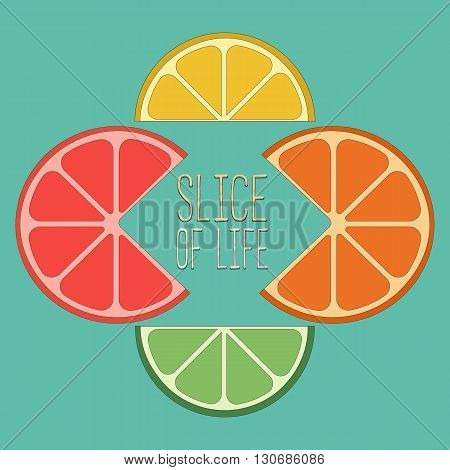 Citrus Fruits. Famous Quote Slice of life Concept. Lemon lime orange grapefruit wedges Concept. Tropical citrus. Natural fruit. Vector Illustration