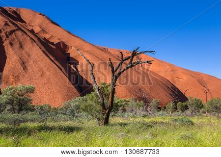Uluru is the most well known Australian landmark. This place is also very important Aboriginal sacred site.