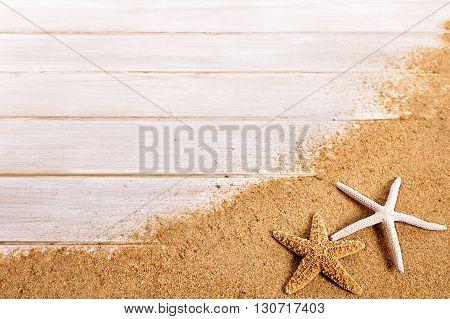 Summer beach background border starfish seashell copy space