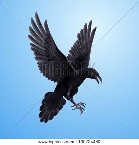 Illustration of aggressive black raven on blue sky background