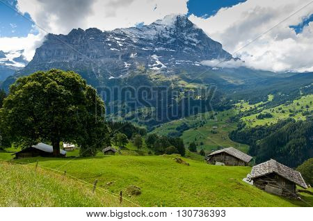 Mount  Eiger, Swiss Alps - snow capped mountains and deep valleys stunning view breath-taking panorama