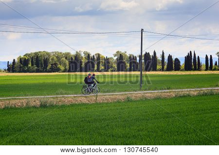 GRADO ITALY - APRIL 25: Cyclists riding the bike along the Nature reserve of the Isonzo river April 25 2016