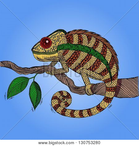 Chameleon on leaf. Colorful hand drawn vector stock illustration