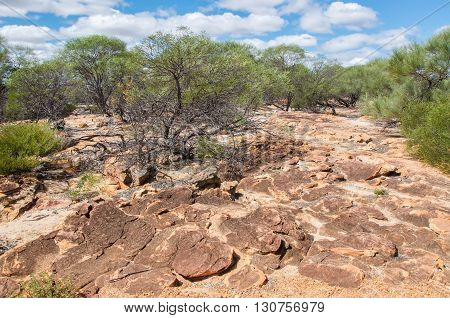Rugged landscape with sandstone and green flora in the bushland at Kalbarri National Park under a blue sky with clouds in Western Australia.
