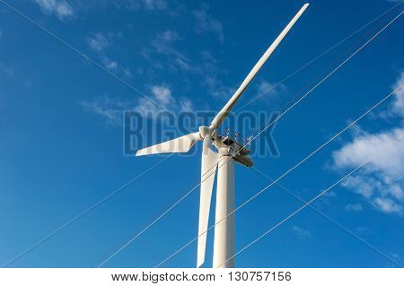 Wind Energy Blows Into Future Amarillo And Turbine Farms On Blue Sky Background