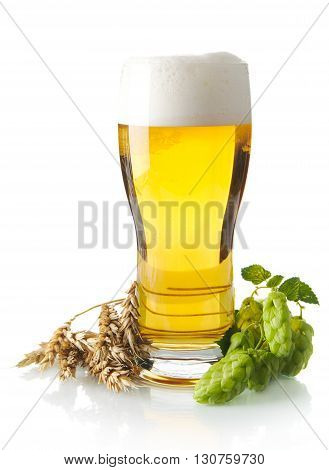 Mug Of Beer On Table With Hop Cones, Ears Of Wheat Isolated On W