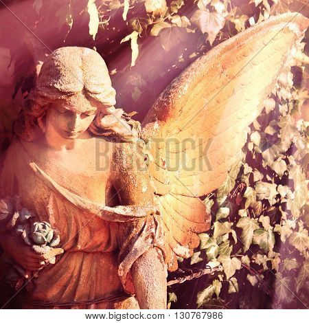 angel in the sunlight (antique statue) (close up)