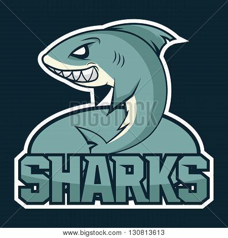 Hungry shark, angry shark, cartoon shark, shark great, white shark, shark wiith big teeth, shark image, shark fin, shark fish, shark attack. Vector. Sharks logo, emblem for a sport team.