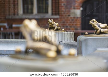 Fountain With Golden Lucky Frog - The Symbol Of Torun City (poland)