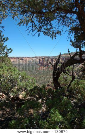 Colorado National Monument Rim