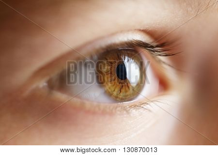 Eye of a child looking at a monitor or television close-up