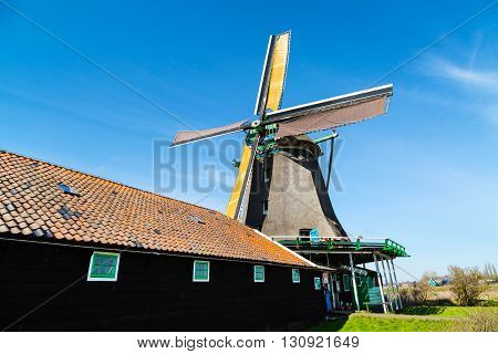 Old windmill in Zaanse Schans, traditional village in Netherlands, North Holland, blue sky, copyspace
