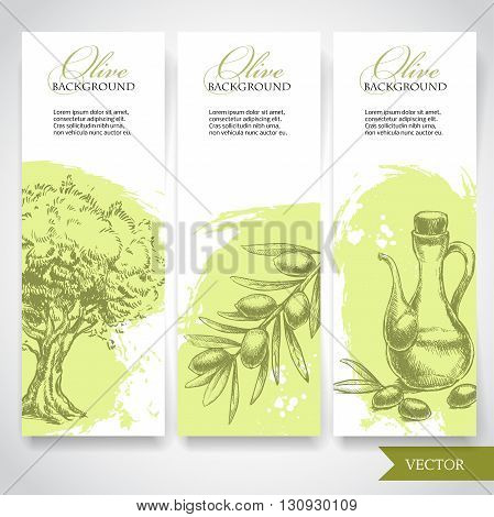 Set of hand drawn olive banners. Olives olive tree and olive branch on watercolor splash background. Organic food illustration.