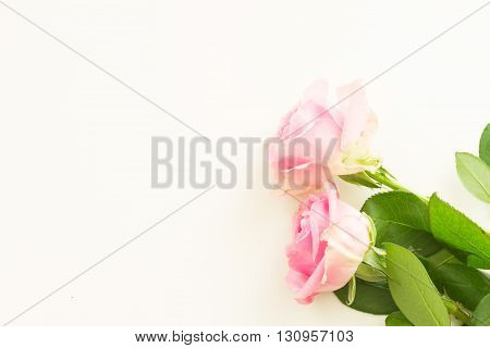 Styled desktop scene with pink fresh flowers, copy space on white table