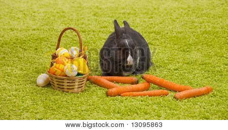 Easter Bunny with eggs, basket and carrots on green grass like carpet. poster