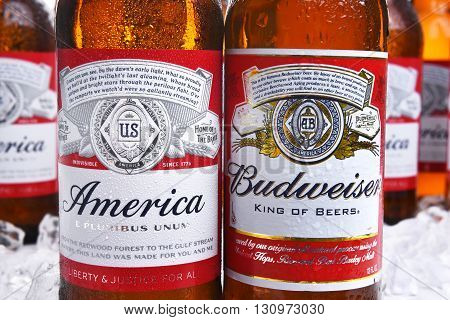IRVINE CA - MAY 21 2016: Two Budweiser Beer Bottles closeup. A limited edition America bottle and a traditional label from Anheuser-Busch.